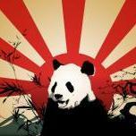 Panda_Wi